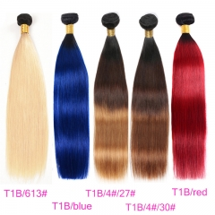 3 Bundles Straight T1B/4#/27# T1B/Red 100% Human Hair T1B/Blue T1B/613 T1B/4#/30# 2019 Hair Color Trends
